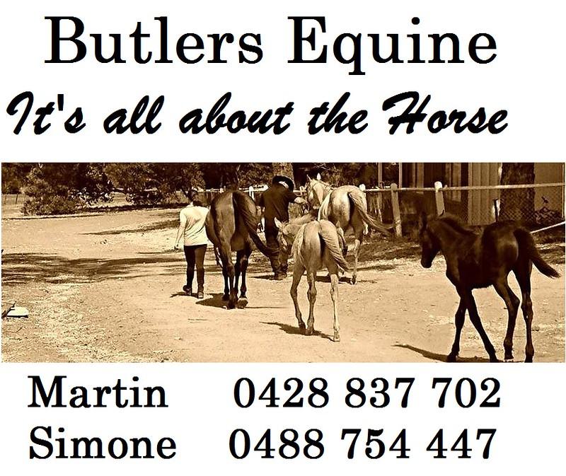 Butlers Equine Gold Sponsor