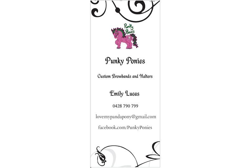 Punky Ponies