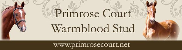 Primrose Court Warmblood Stud and Training Yard Platinum Sponsor