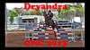 2013 Dryandra