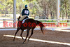 14-09-13_Mad_0508-A