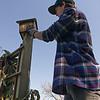 Bob cleans the birdhouses