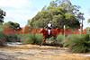 14-07-21_Red_5967-A