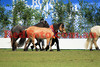 14-09-29_Red_56711-A