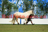 14-09-29_Red_56709-A