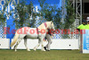 14-09-29_Red_56705-A