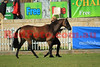 14-10-01_Red_44071-A