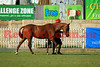 14-10-01_Red_44074-A