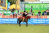 14-10-01_Red_50982-A