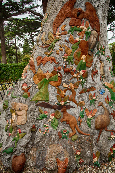 """The Fairies Tree"""