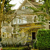 Kitsilano Home ~ West 7th Ave