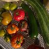 Vwgetables from the Kitchen Garden