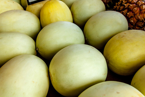 Honey Dew Melons