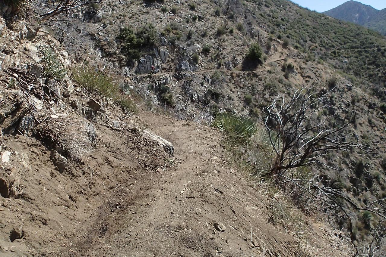 20140316037-Strawberry Peak Trailwork