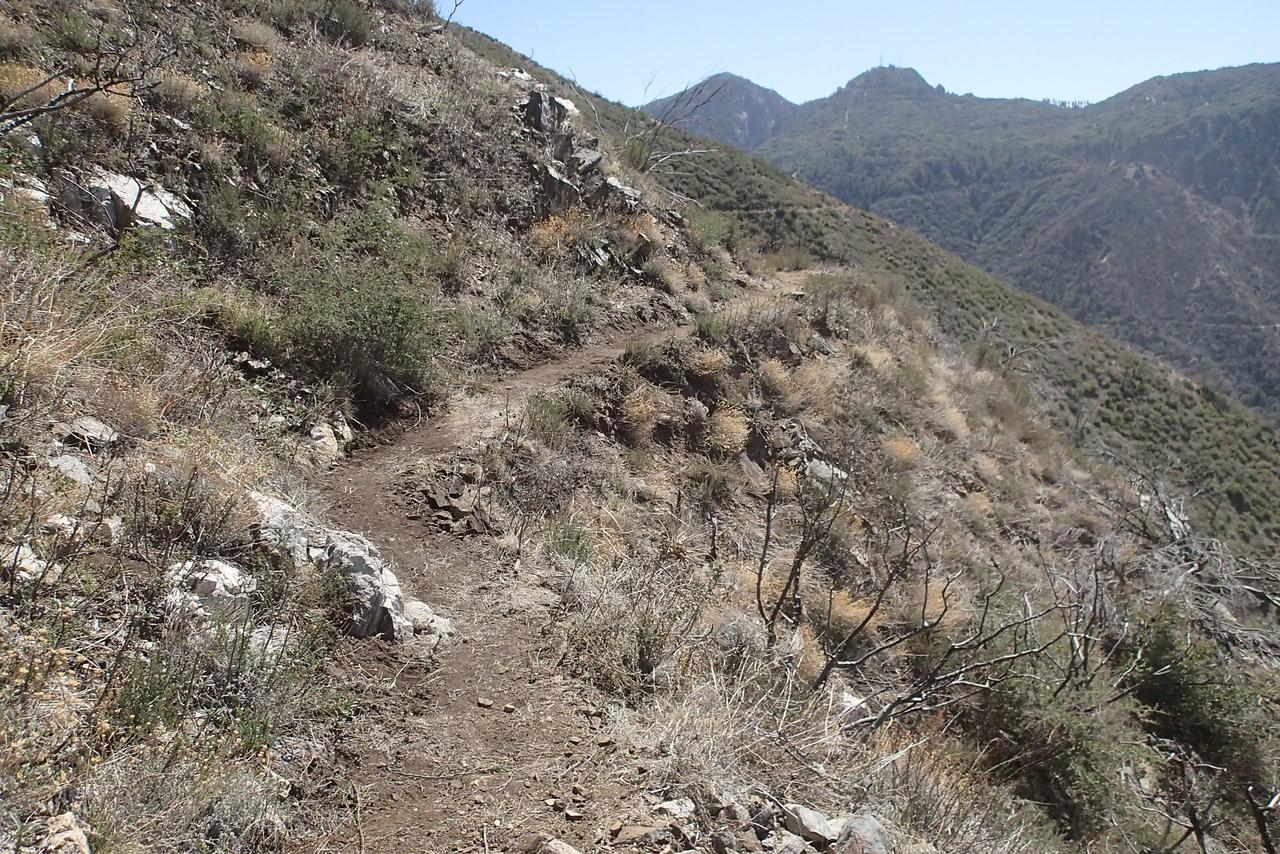 20140316036-Strawberry Peak Trailwork
