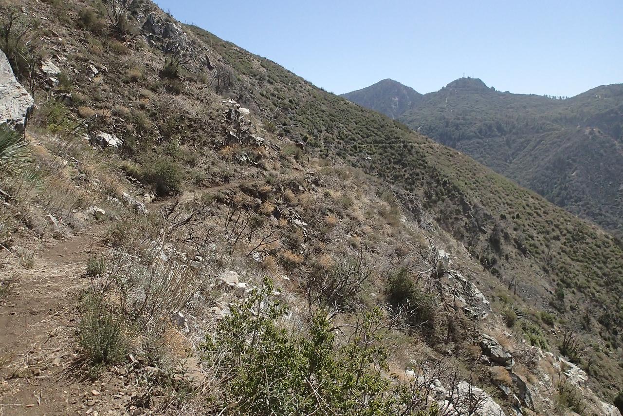 20140316035-Strawberry Peak Trailwork