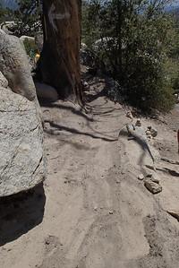 20140510010-Mount Hillyer Trailwork
