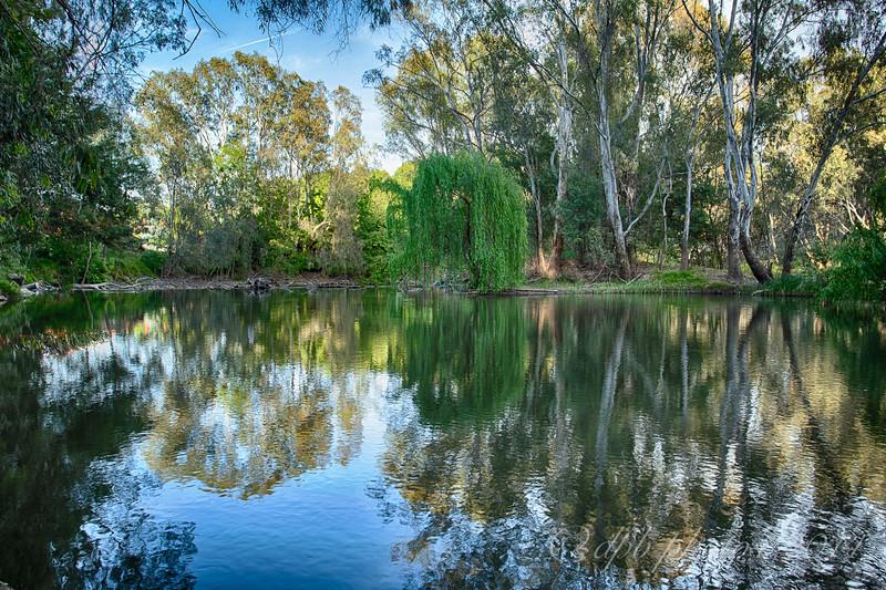 Still Pond ~ Ovens River