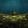 20140713 Virtual Seabed