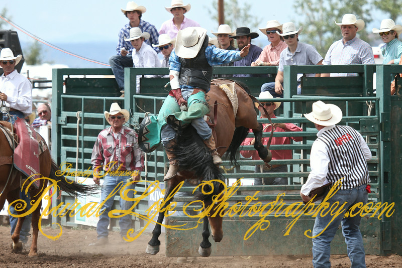 The next 8 photos will demonstrate how to remove Bareback Riggin while still riding...