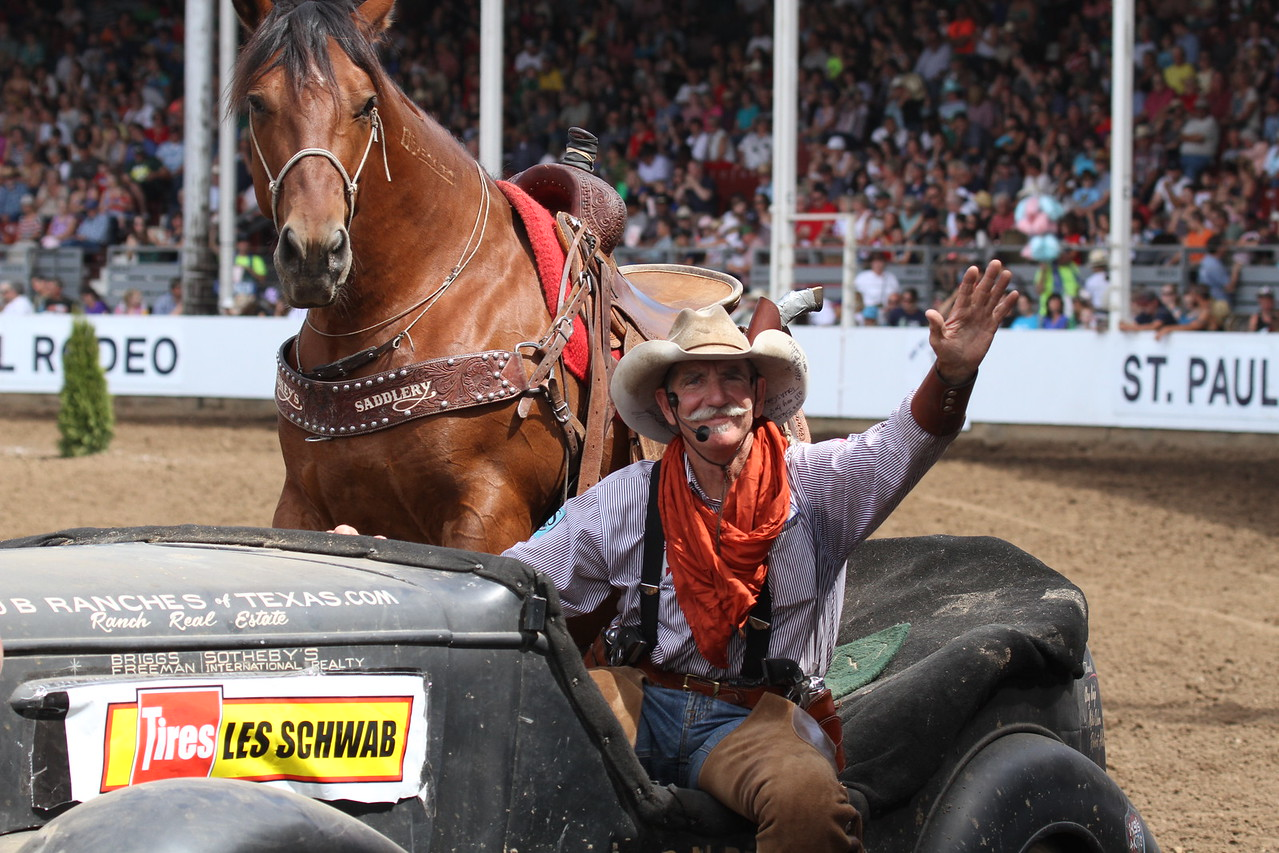 Bobby Kerr wild Mustangs