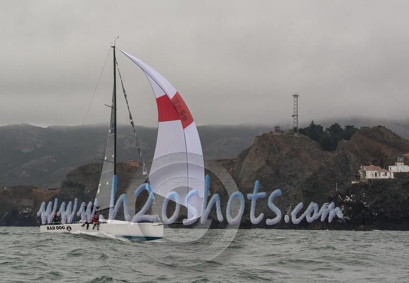 2014AldoOcean-82