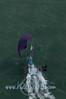 2014Int18'sMonAerials-328