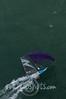 2014Int18'sMonAerials-334
