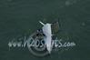 2014Int18'sMonAerials-386