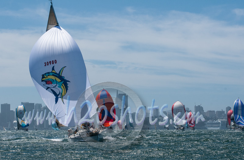 2014 Jazz Cup-101