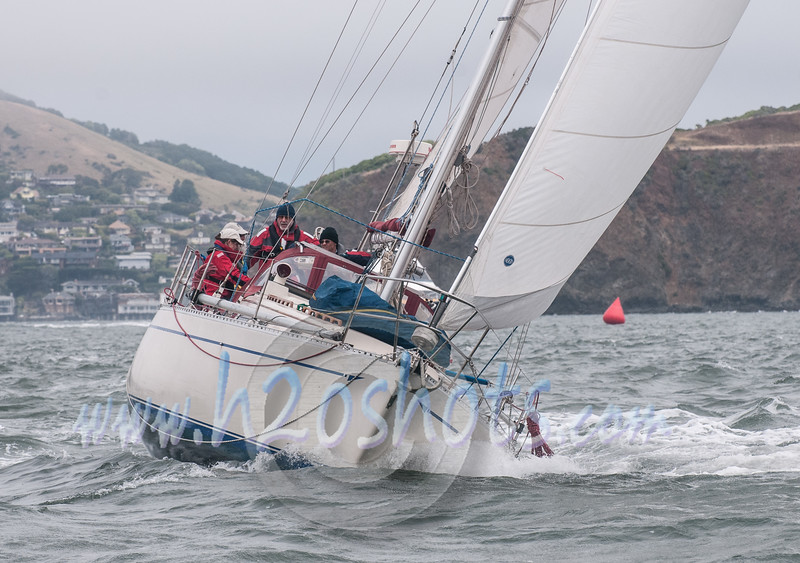 2014 Spinnaker Cup-100