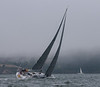 2014 Spinnaker Cup-68