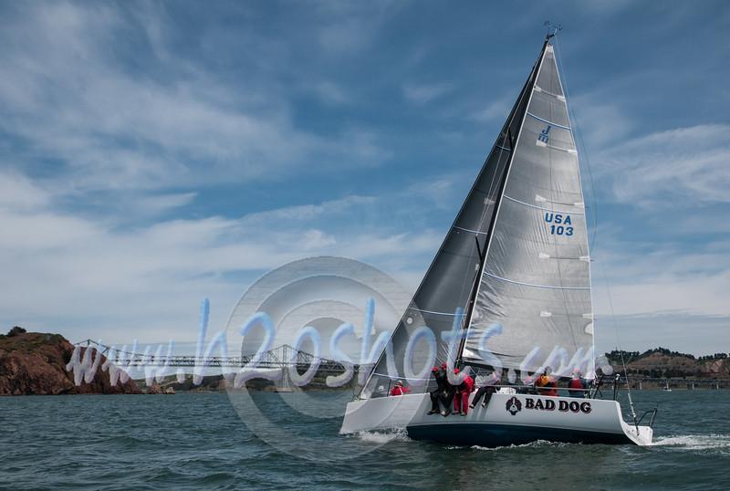 2014 Vallejo Race-31