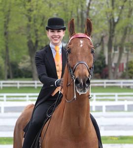2014 Horse Show Season