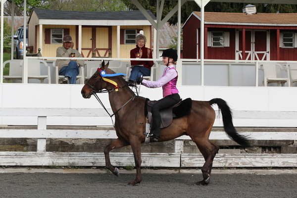 069 Academy Walk-Trot-Canter Equitation Championship 11-17