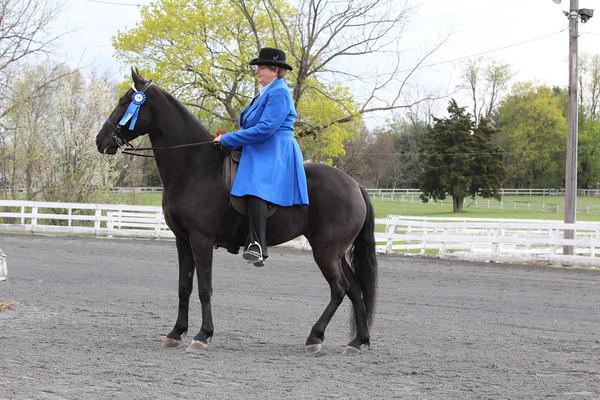 070 ADP All Day Pleasure E-W Novice Horse Or Rider 2 Gait