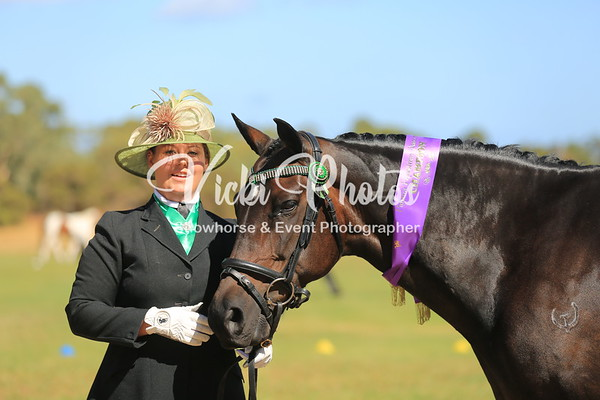Pinjarra All Breed Spectacular - 9th March