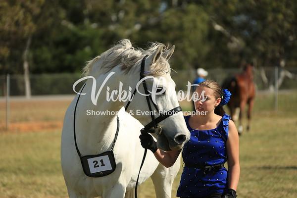 Veteren Horse Show  (4)