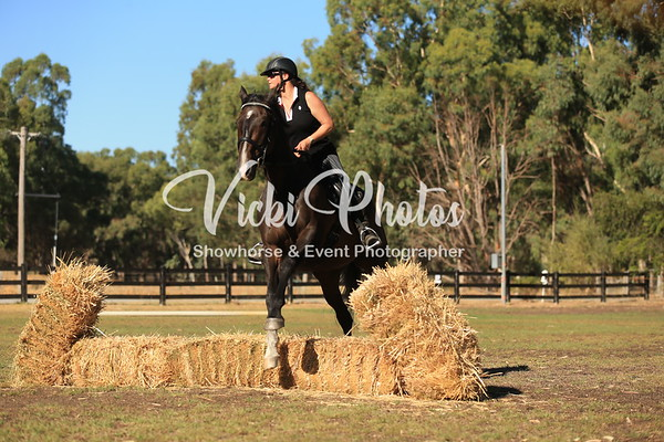 Working Equitation Clinic - 15th February