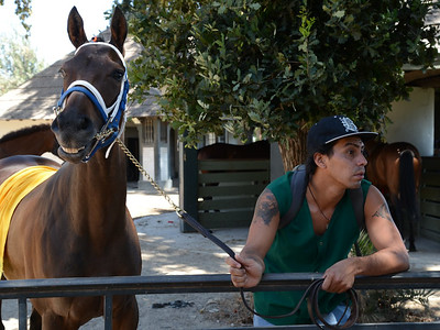 Trainer and race horse at The Club Hípico. Santiago, Chile