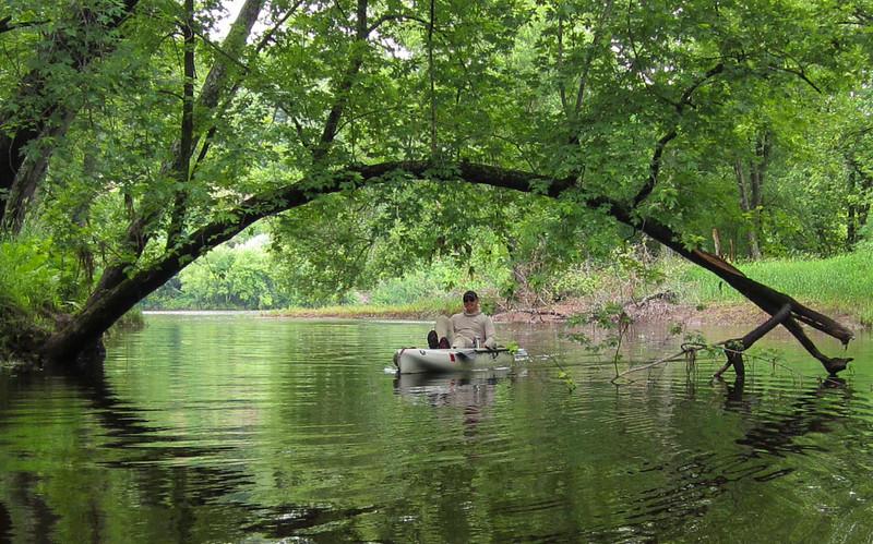 Sampson-Mark-2014-Paddle-Back-Water-Tree