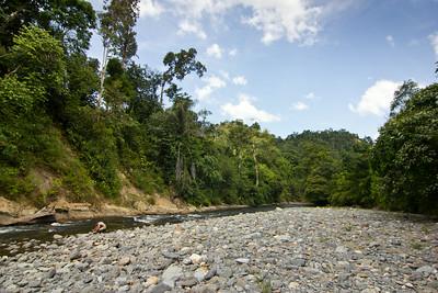 řeka Berkeil, pomyslná hranice národního parku. skutečná hranice je až za plantážemi