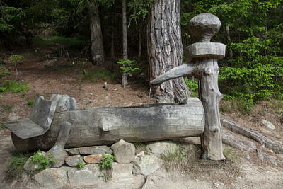 "First day of hiking...""The Mushroom Trail"" had lots of these carvings."