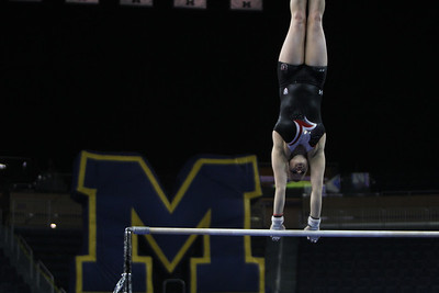 2014 University of Utah Gymnastics @ UMich