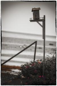 20110725_Vacance_Sainte-Flavie-2011_0001
