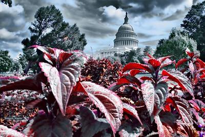 2014 Washington DC LUNAs