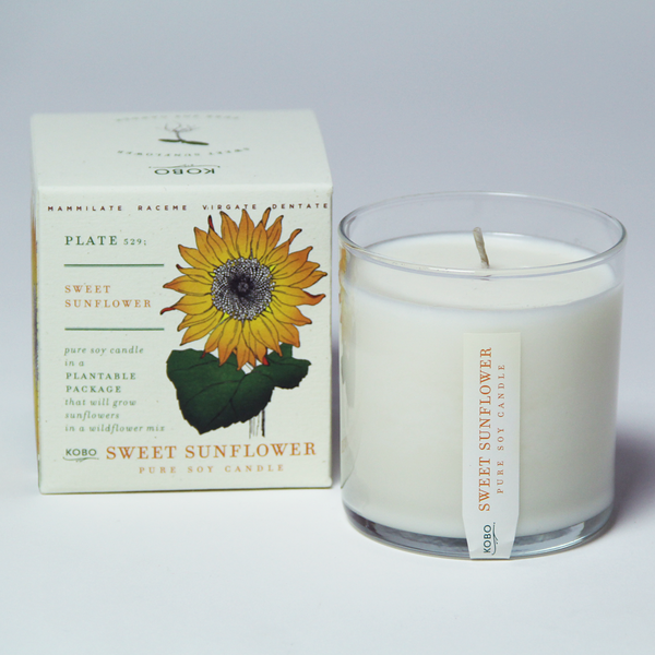 Sweet Sunflower Seeds Candle