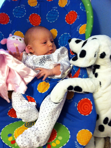 Favorite first toy - the stuffed dalmatian dog Nate chose for her at Ikea before she was born