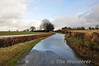 The flooded L31703 road at Tirhogar, south of Portarlington. Sat 08.02.14