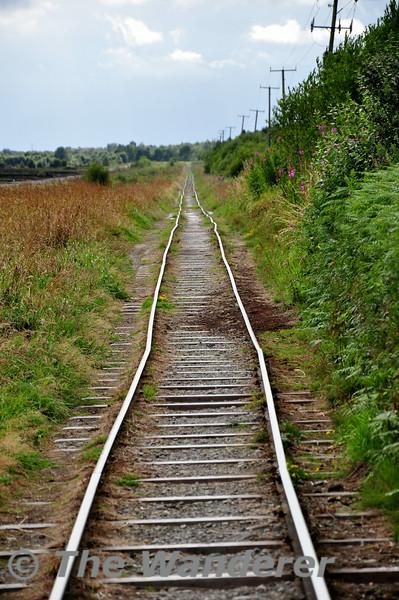 Bord na Mona Track at Derryounce Bog near Portarlington. Mon 14.07.14